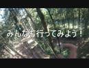 【ニコニコ動画】フォレストアドベンチャー箱根に行ってきた!(去年11月末に)を解析してみた