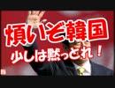 【ニコニコ動画】【煩いぞ韓国】 少しは黙っとれ!を解析してみた