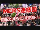 【ニコニコ動画】【MERS迷惑国】 閑散とする仁川空港!を解析してみた