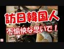 【ニコニコ動画】【訪日韓国人】 不愉快な思いで!を解析してみた