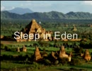 【ニコニコ動画】【鏡音リン・レン】Sleep in Eden【フォークトロニカ・オリジナル】を解析してみた