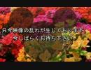 【ニコニコ動画】【艦これ】扶桑姉様と提督の二周年記念祭 ACT.6【ゆっくり実況】を解析してみた