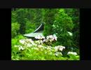 【ニコニコ動画】ゆっくり 古寺巡礼 vol.18 あじさい特集を解析してみた