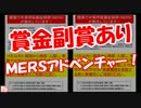 【賞金副賞あり】 MERSアドベンチャー!