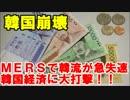 韓国崩壊10年の努力が1か月で・・MERSで韓流が急失速