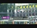 【ニコニコ動画】【競馬】 2015年 函館スプリントS 【GⅢ】を解析してみた