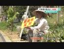 【ニコニコ動画】沖縄戦後70年を解析してみた