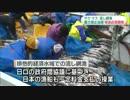 【ニコニコ動画】[日本への対抗措置]  ロシア上院 サケ・マス流し網漁禁止法案可決へ 6.24を解析してみた
