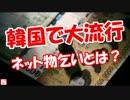 【ニコニコ動画】【韓国で大流行】 ネット物乞いとは?を解析してみた