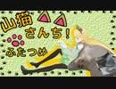 【ニコニコ動画】【WoT】山猫さんち! ふたつめ【ゆっくり実況】を解析してみた