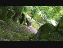 【ニコニコ動画】【鳥さんぽ】6月京都【もう暑い】を解析してみた
