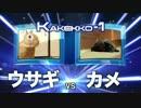【実写版】ウサギとカメ