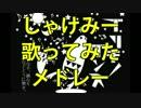 【作業用BGM】しゃけみーソロ10曲歌ってみたメドレー! thumbnail