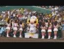 【ニコニコ動画】阪神タイガース 福留孝介ヒーローインタビュー 平成27年6月27日甲子園を解析してみた