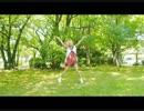【ニコニコ動画】【ふぁんみん】ルカルカ★ナイトフィーバー 踊ってみた【初投稿】を解析してみた