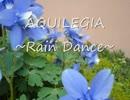 【ニコニコ動画】【作業用BGM】aquilegia ~rain dance~【ピアノ即興】を解析してみた