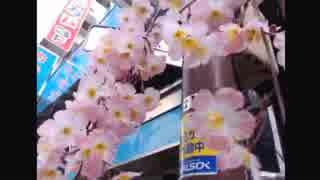 2015年03月17日 アキバから、どっかいこー Part 04