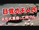 【目覚めよ人民】文化大革命って何アル!