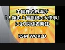 【KSM】中国株式市場が『人類史上最悪級の大惨事』になり関係者発狂。