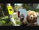 【ニコニコ動画】【バイク】 春まっしぐら奥多摩 #3完結編 【DS250】を解析してみた