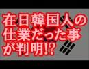 【ニコニコ動画】入国管理局のサーバーダウンは在日韓国人の仕業だった事が判明!?を解析してみた