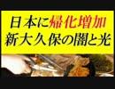【ニコニコ動画】新大久保の闇と光『倒産する店が続々』=日本に帰化が増加を解析してみた