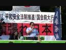 【頑張れ日本】平和安全法制推進!国会前大行動 3