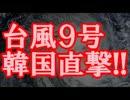 【速報】 台風9号韓国直撃!!