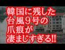【超絶朗報】韓国に残した台風9号の爪痕が凄まじすぎるwww