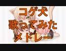 【作業用BGM】コゲ犬ソロ10曲歌ってみたメドレー! thumbnail