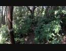 28Lリュックで行く、MTB林道走行&ソロキャンプ その1