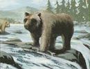 灰色熊の冒険 第6話