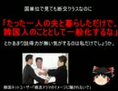 【ニコニコ動画】【ゆっくり政経】韓ネット民「韓流ドラマのイメージに騙されないで」を解析してみた