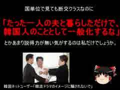 【ゆっくり政経】韓ネット民「韓流ドラマのイメージに騙されないで」
