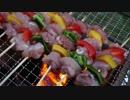 【ニコニコ動画】焼き鳥が炭火で焼けるのを淡々と眺めるだけの動画を解析してみた