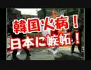 【ニコニコ動画】韓国人火病!日本に嫉妬!を解析してみた