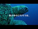 オービィ横浜 これが本当の動物だ カメ 篇