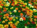 【Aviutlスクリプト】カラーノイズ【カスタムオブジェクト】