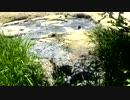 【ニコニコ動画】泥火山 ボッケ②を解析してみた