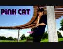 【ニコニコ動画】【きいあ】  PiNK CAT  【踊ってみた】を解析してみた