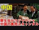 【ニコニコ動画】寄生虫がウジャウジャ…止まらない中国の食肉スキャンダルを解析してみた