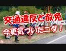 【交通違反と赦免】 今更気づいたニダ!