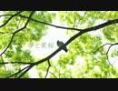 【なないろニジ秋 カバー】夢と葉桜【歌ってもらった】