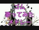 【作業用BGM】ゴムソロ10曲歌ってみたメドレー!