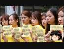 【ゆっくり保守】韓国人大学生600名「安保法案に反対!」