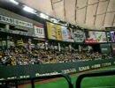 阪神応援2008at東京ドーム