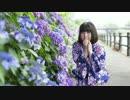 【浴衣で】夏恋花火 踊ってみた【ちかちゅう】 thumbnail