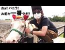 マザー牧場の大自然を大冒険 乗馬編【レトルト・牛沢・フジ】part2