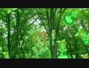 ウサミンの森