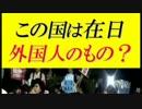 この国は在日外国人のものだそうです=SEALDs KANSAIさま